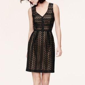 Ann Taylor Loft Black Lace Cockail Dress
